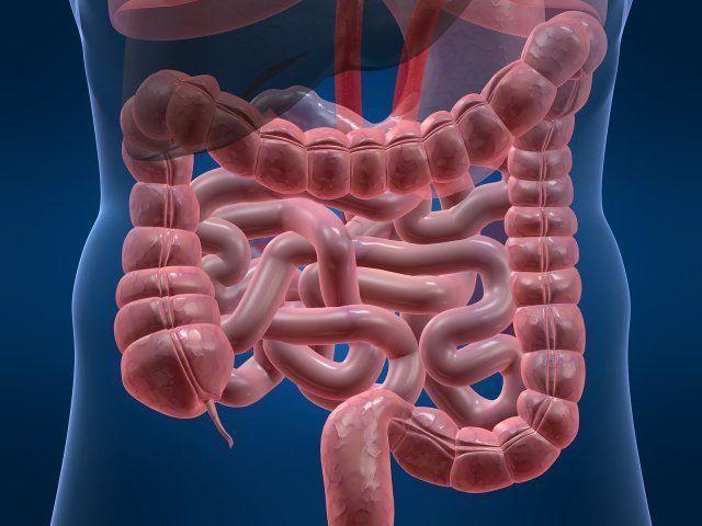 Болезни желудка в старческом возрасте их лечение thumbnail